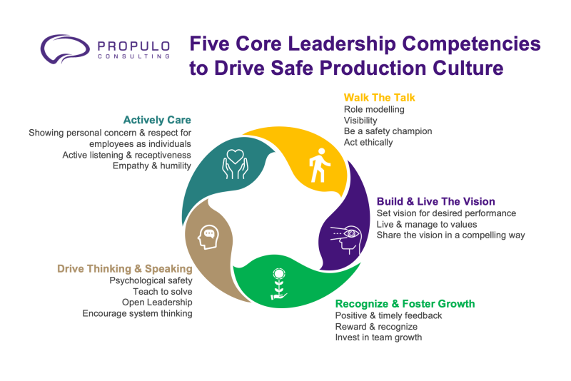 five core leadership competencies model designed by propulo consulting