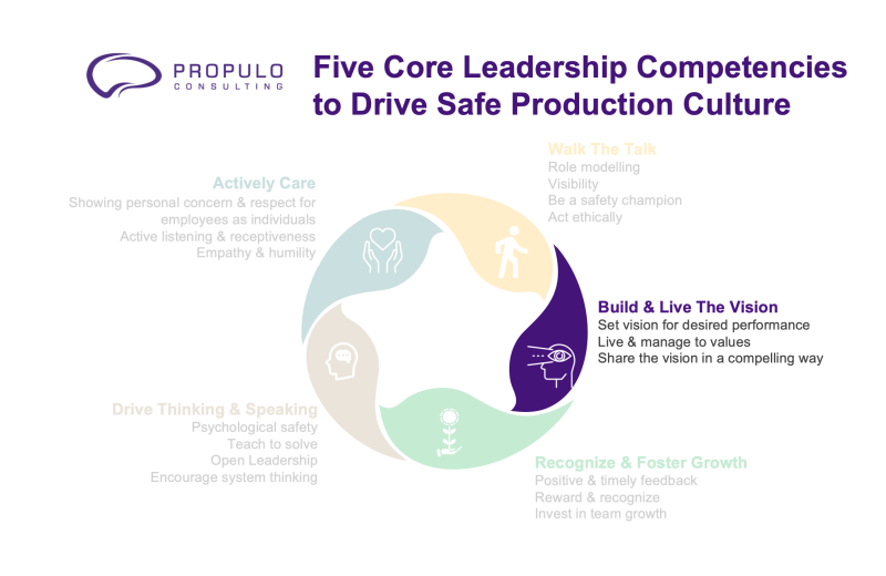 safety vision leadership 5 core leadership competencies to drive safe production culture by propulo consulting - build & live the vision