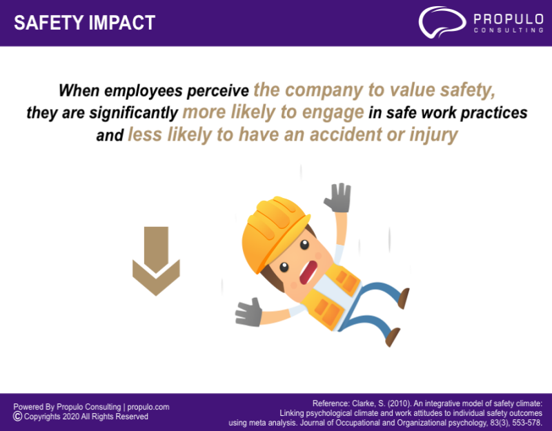 Safety Infographics by propulo consulting