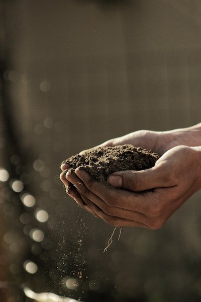 soil in cupped hands that represents a growth mindset