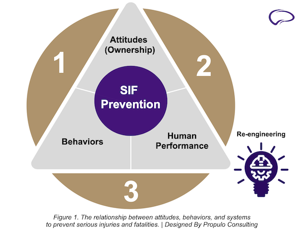SIF prevention model by Propulo Consulting