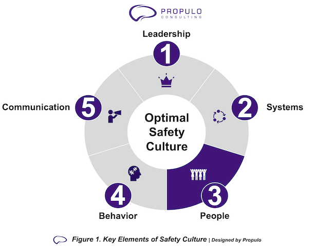 Optimal Safety Culture model by Propulo Consulting