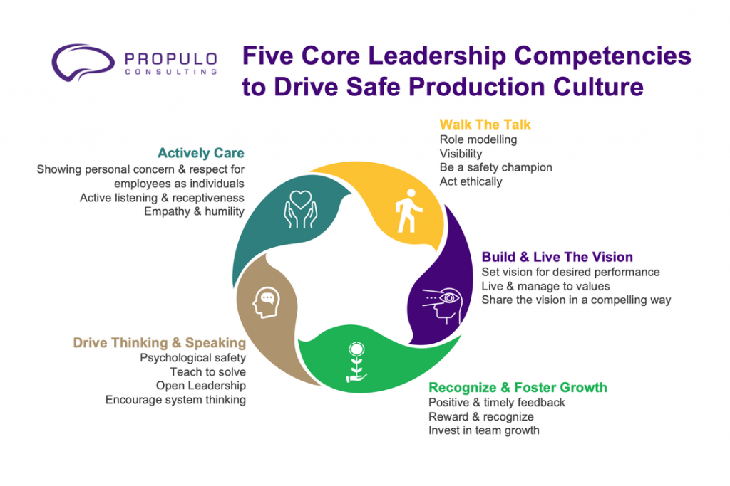 leadership competencies by propulo consulting